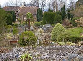 Immergrüne Gehölzinseln im Bauerngarten geben dem Auge Halt und sorgen für ordnende Strukturen.