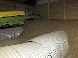 Eine professionelle Lüftung im Kartoffellager ist wesentlich für den weiteren Erhalt der Knollenqualität.