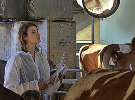 Franziska Rehm (LI) untersucht den Kuhkomfort in einem Milchviehstall.