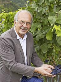 Dr. Rudolf Nickenig ist Generalsekretär des Deutschen Weinbauverbandes (DWV)