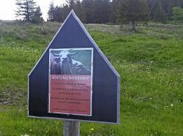In jedem Fall ratsam: Warnschilder, die Spaziergänger ohne Erfahrung im Umgang mit Rindern warnen und auf das richtige Verhalten hinweisen.
