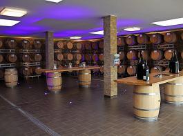 Der neue Barriquekeller ist das Herzstück des Weinguts Briem.