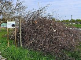 Totholzhaufen aus Baum- und Heckenschnitt bieten Kleinlebewesen und Säugetieren Unterschlupf.
