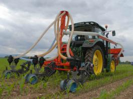 Das Injektionsgerät zur exakten Ablage des CULTAN-Düngers in 18cm Tiefe zwischen den Maisreihen.