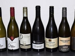 14 Betriebe mit je einem Wein zählen zu den Pionieren der gemeinsamen Marke Pino Magma.