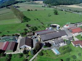 Der Negelhof in Überlingen