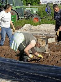 Laut der IG Bau arbeitet ein großer Teil der Saisonarbeitskräfte in der Landwirtschaft zu prekären Bedingungen.