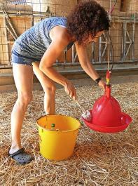 Claudia Hoffarth beim Reinigen der Tränken mit Obstessig.