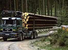 Das Verkehrsministerium Baden-Württemberg will die Stammlänge bei Langholztransporten begrenzen