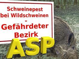 Die Seuche ist bis auf nur noch 12 km an deutsches Staatsgebiet herangerückt.