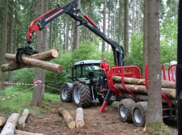 Die bayerischen Forstzusammenschlüssekönnen Waldbesitzer heute professionell beim Bewirtschaften unterstützen.