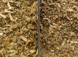 Links eine Shredlage mit 26 mm, rechts  eine  Maissilage mit 8 mm Häcksellänge.
