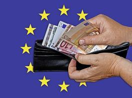 Der DBV hat klare Vorstellungen, wie die Fördermittel für die GAP in Deutschland eingesetzt werden sollten.