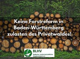 Um eine möglichst große Reichweite zu erzielen, ruft der  BLHV  nicht nur die Waldbauern zum Unterzeichnen auf.  Er sieht jetzt alle Landwirte aufgefordert, sich solidarisch für den land- und forstwirtschaftlichen Berufsstand einzusetzen.