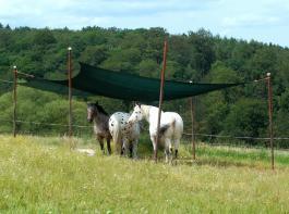 Beschattungsnetze bieten Schutz vor der Sonne, nicht jedoch vor Regen.
