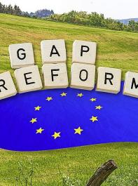 Das EU-Parlament hat am 23. Oktober seine Verhandlungsposition zur Reform der GAP beschlossen.
