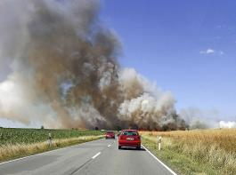 Flächenbrand im südlichen Sachsen-Anhalt am 1.Juli 2018