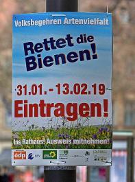 """Das bayerische Volksbegehren Artenvielfalt """"Rettet die Bienen"""" erregt mittlerweile bundesweit Aufmerksamkeit."""
