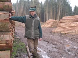 Die wirtschaftlichen Aspekte der Holzvermarktung sind im Kartellverfahren umstritten.