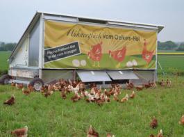 Interessant für Direktvermarkter: Zur  mobilen Hühnerhaltung  haben die  Kunden eine sehr  positive Einstellung und sind daher bereit,  überdurchschnittliche  Eierpreise zu bezahlen.