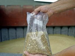 Die Erzeugerpreise für Weizen liegen im Bundesdurchschnitt aktuell bei 162 Euro pro Tonne.