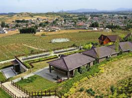 Das Château Renxuan hat, wie die anderen großen Weingüter der Region, einen Freizeitkomplex angegliedert, um Publikum anzulocken.