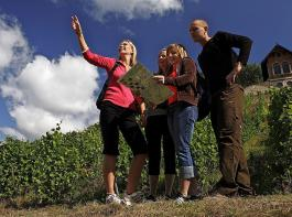 Auch das Thema Weintourismus wird beim Badischen Weinbautag eine Rolle spielen.
