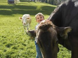 Urlaub auf dem Bauernhof ist ab dem 18. Mai unter Auflagen wieder möglich.