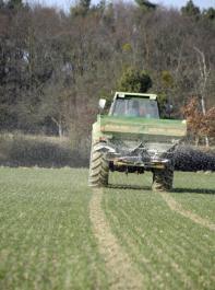 Um Treibhausgasemissionen zu mindern, soll die Landwirtschaft  unter anderem  Stickstoff noch effizienter einsetzen und den Ökolandbau ausweiten.