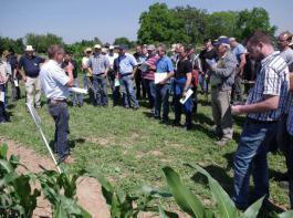 Die Pflanzenschutzversuche im Mais stießen auf starkes Interesse. ZG-Produktmanager Hubert Sprich erläutert eine Behandlungsstrategie.