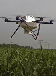 Die Maiszünsler werden zunehmend aus der Luft mit Multikoptern bekämpft.