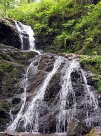 """Der Holchen-Wasserfall war angeblich der Lieblingsort der Großfürstin Maria Alexandrowna während des Kuraufenthalts von Zar Alexander II. im """"Bade Petersthal"""" 1871."""