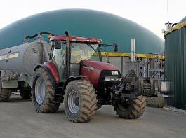 Der Anteil aus Biomasse belief sich laut Stuttgarter Umweltministerium im ersten Quartal 2020 auf 11,9 Prozent der Nettostromerzeugung.