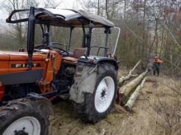 Private kleine Waldbesitzer müssen deutlich höhere Beiträge zahlen.