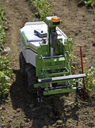 Der erste auf dem Markt erhältliche Roboter Oz der Firma Naïo konnte auf den Versuchsflächen vorgeführt werden.