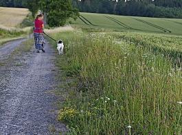 Die Natur ist für alle da, aber Spaziergänger sollten auch auf die Land- und Forstwirtschaft Rücksicht nehmen.