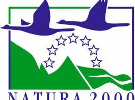 Das vom Kabinett beschlossene umfassende Umwandlungs- und Pflugverbot für Dauergrünland in Natura 2000-Gebieten erregt die Gemüter im bäuerlichen Berufsstand.