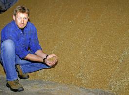 Das eingelagerte Getreide ist wertvoll, entsprechend konsequent sollte man es vor Verderb schützen.