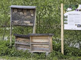 Wildbienenhäuser in einer Obstbaumplantage bei Friedrichshafen.