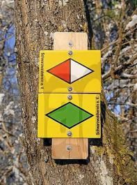 Der Schwarzwaldverein sieht durch den Wolf auch  die Wanderdestination Schwarzwald beeinträchtigt.