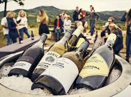 Pinot Magma – eine Gemeinschaftsmarke der Kaiserstühler Winzer