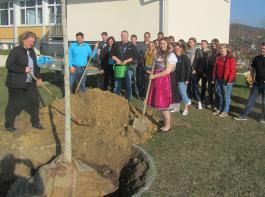 Traditionell wurde ein Nussbaum gepflanzt als Symbol für das Gedeihen der Landjugendgruppe.