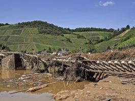 Zerstörungen nach dem verheerenden Starkregen am 14. Juli bei Marienthal im Landkreis Ahrweiler. Auch Bauern und Winzer haben in den Katastrophenregionen schwere Schäden zu beklagen.