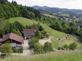Der Lehhaldehof liegt als Aussiedlerhof am Rand von Freiburg zwischen Rebhängen.
