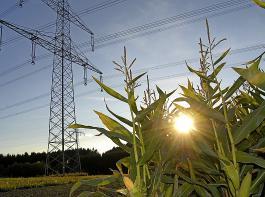 Den Ausbau der erneuerbaren Energien halten 92 Prozent der Befragten für wichtig.