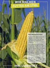 """Das """"Maisschild"""" informiert  über die hohe Ertragsleistung bei geringem Wasserbedarf und klärt darüber auf, dass ein Hektar Mais so viel Sauerstoff produziert, wie 50 bis 60Menschen im Jahr zum Leben benötigen."""