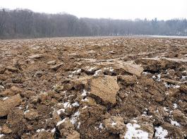 Laut Bodenzustandsbericht ist der Kohlenstoffvorrat in den landwirtschaftlich genutzten Böden sehr variabel.