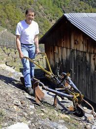 Alex Berchtold bewirtschaftet 1400 Quadratmeter Reben.