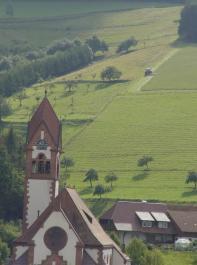 Für Grünland gibt es differenzierte Fördermaßnahmen je nach Hangneigung, Viehdichte und Pflanzenzusammensetzung.