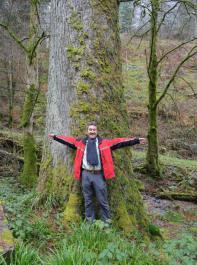 Wenn man die Arme zur Seite ausstreckt, zeigt das etwa die Breite des mächtigen Baumstamms.